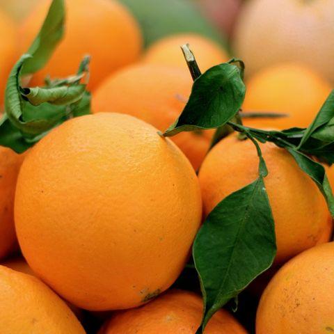 Taronja Eco